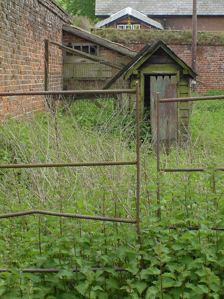 Overgrown gardens can block access. How nice that this image is FREE to download and use! (c) Jean Thornhill. Click for source.
