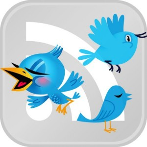 Luc Latulippe's twitter birds